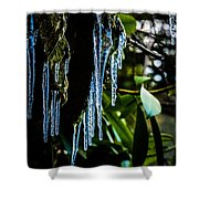 Icicles 3 Shower Curtain
