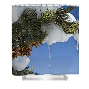 Icicles On Pine Tree Shower Curtain