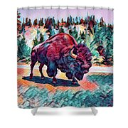 Icon Of The West Shower Curtain