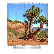 Iconic Southwest Shower Curtain