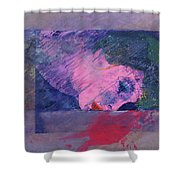 Iconoclasm 2 Shower Curtain