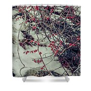 Icy Berries Shower Curtain