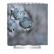 Icy Blue Berries Shower Curtain