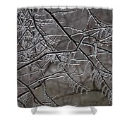 Icy Branches Shower Curtain