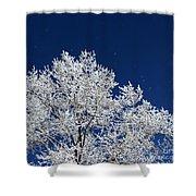 Icy Brilliance Shower Curtain