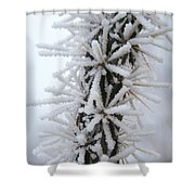 Icy Cactus Shower Curtain
