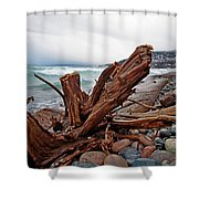 Icy Landing Shower Curtain