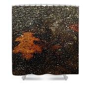Icy Leaf Shower Curtain