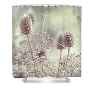 Icy Morning. Wild Grass Shower Curtain