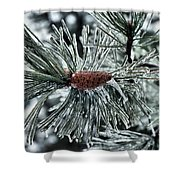 Icy Pine Shower Curtain