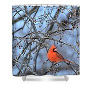 Icy Red Shower Curtain