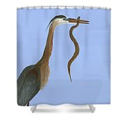 I'd Rather Have Flounder Shower Curtain