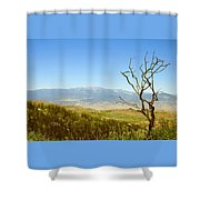 Idyllwild Mountain View With Dead Tree Shower Curtain