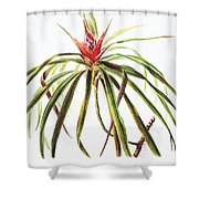 Ieie Plant Art Shower Curtain