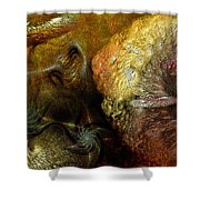 Igneous Shower Curtain