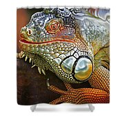 Iguana Full Of Color Shower Curtain
