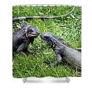Iguana Kisses St Thomas Shower Curtain