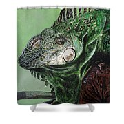 Iguana Shower Curtain