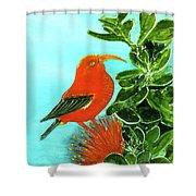 IIwi Scarlet Honeycreeper Bird #54 Shower Curtain