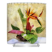 Ikebana Bird Of Paradise Shower Curtain