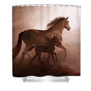 Il Cavallino Shower Curtain
