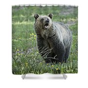 I'll Only Say This Once Shower Curtain by Sandra Bronstein