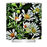 Illinois Wildflowers 3 Shower Curtain