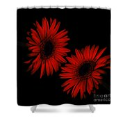 Illuminated Floral Shower Curtain