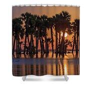 Illuminated Palm Trees Shower Curtain