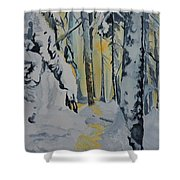 Illuminated Wilderness Shower Curtain
