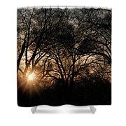 Illuminating Through Trees  Shower Curtain