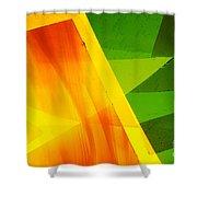 Illuminations 14 Shower Curtain