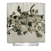 Illusioned Part 2 Shower Curtain