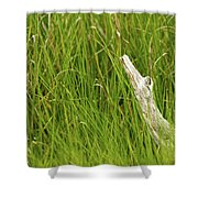 Illusions In The Grass Shower Curtain