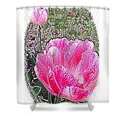 Illustrated Rose Vignette Shower Curtain