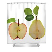 Illustration Of Apple And Pear Shower Curtain