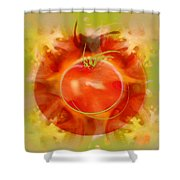 Illustration Of Tomato Shower Curtain