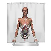 Illustration Of Upper Human Torso Shower Curtain