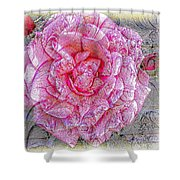 Illustration Rose Pink Shower Curtain
