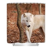 I'm A Wolf Shower Curtain