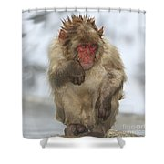 I'm Just Cold Shower Curtain