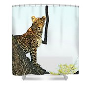 I'm Looking At You Shower Curtain