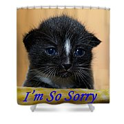 I'm So Sorry Greeting Card Shower Curtain