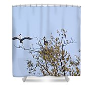 I'm The Man Err Bird II Shower Curtain