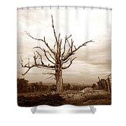 Fantastic Tree Shower Curtain