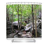 Image Included In Queen The Novel - Rocks At Smugglers Notch Shower Curtain