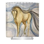 Imagination Angel Shower Curtain