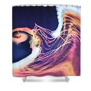 Img0052 Shower Curtain