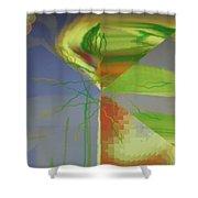 Img0175 Shower Curtain