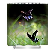 Img_1521 - Butterfly Shower Curtain